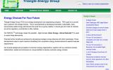 triangle energy home page