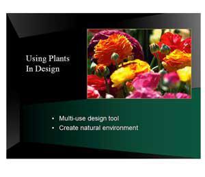 plantscape.jpg